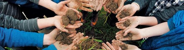 Stichting Ecosystem Restoration Foundation/Ecosystem Restoration Camps