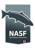 NASF Iceland Logo