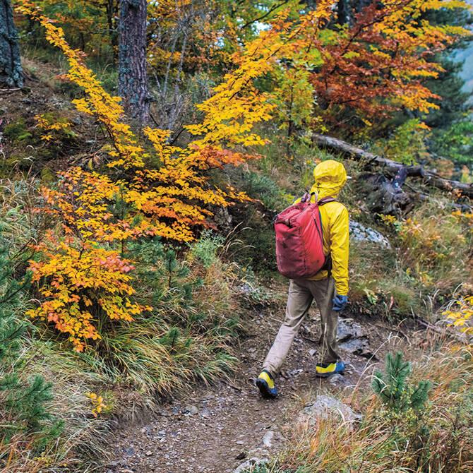 Collezione d'escursionismo da uomo