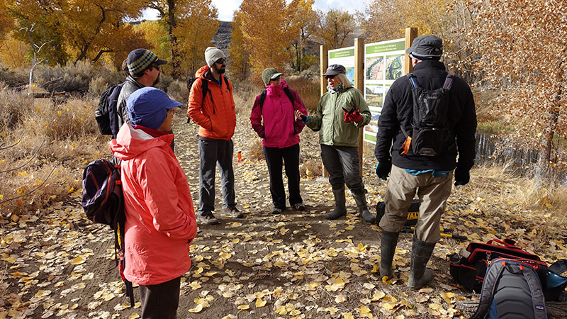 Environmental Grants and Support